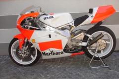 Yamaha TZ 250 94 Giacomo